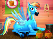 Rainbow Dash and the New Born Baby Game
